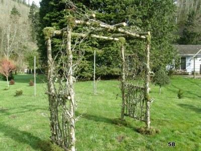 Organic Wedding Pergula