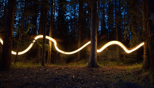 Forest Wave