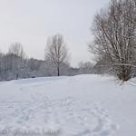 Las colinas nevadas
