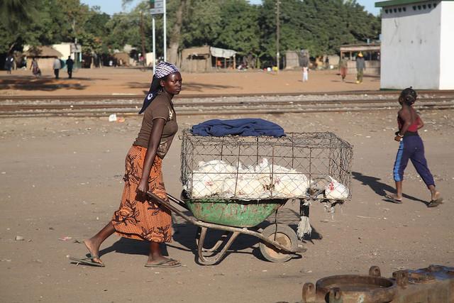 Mozambique, Garue