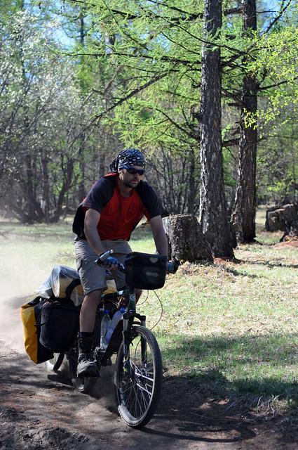 Gladed downhill trail