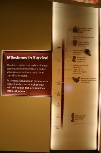 Milestones in Survival