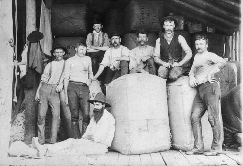 Shearers with bales to be stripped to Junee railhead. George Howard (the selector) is seated against bale - Ariah Park, NSW, c. 1896