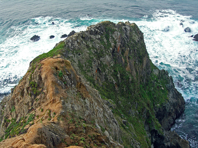 The steep, narrow tip of Tomales Point.