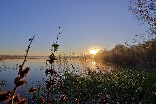 Lake Holon Dawn View