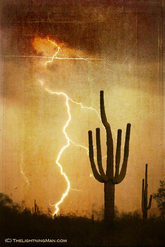 Saguaro Lightning storm V