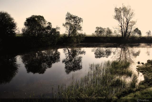 Water Mirror