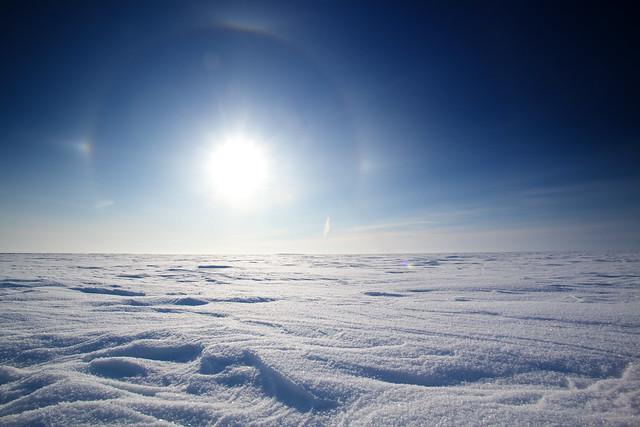 The Winterland