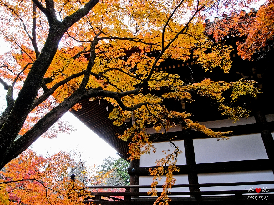 1125_kyoto_1244