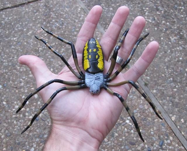 garden spider replica in hand flickr photo sharing