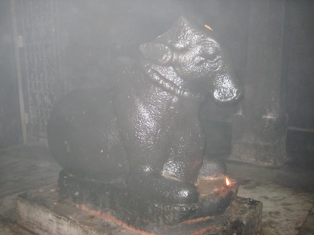 (Inner) Nandhi in meditative posture, Atcheeswarar Temple at Acharapakkam