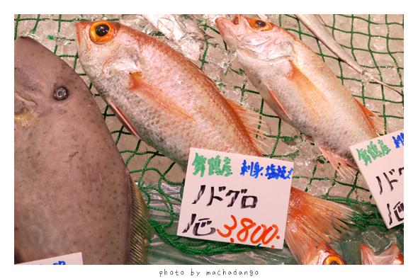 我最愛的魚