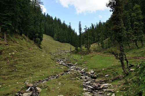 Karsong, Mandi, Himachal Pradesh, India