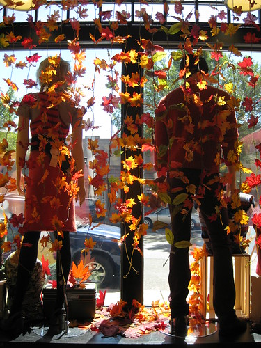 Fall Window by Everyday People Clothing