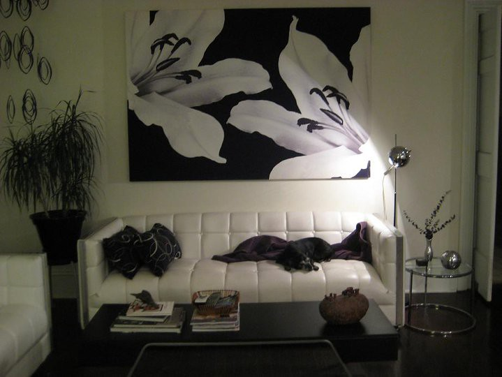 Dreams of Being Hip: Decorating my Apartment - Pizza FM ...