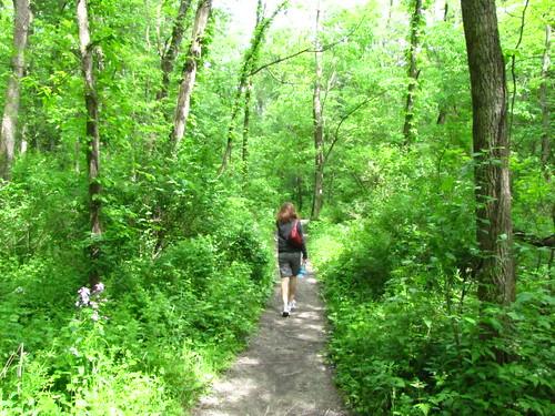 Hickory Hill Park