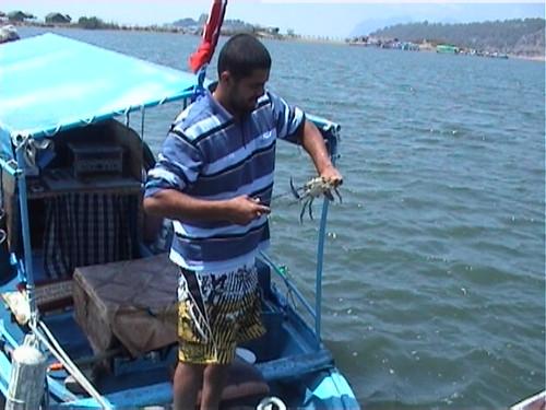 201005070079c_crab-catching