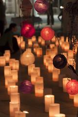 Candle Night in Niigata
