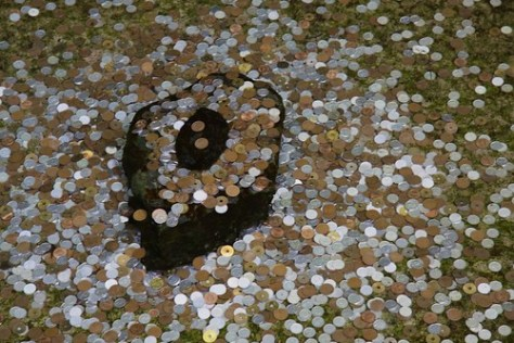 Coins tossed in a pond, in Ginkaku-ji (Silver Pavilion)