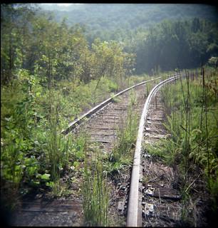 Overgrown railroad siding. Red Hill VA, September 2010