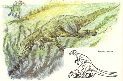 _Dinosaurs Discovered_ p. 16