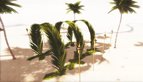 Okinawa/ Coming soon