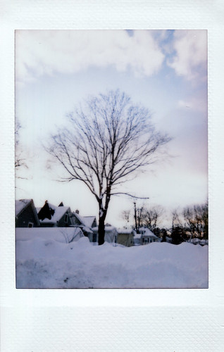 Polaroid 300 Photo Walk - January 2011
