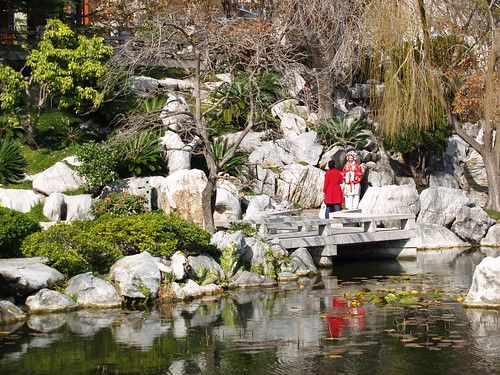 Chinese Garden of Friendship sydney photo