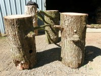 forest logs for your wedding