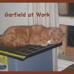 Garfield at Work