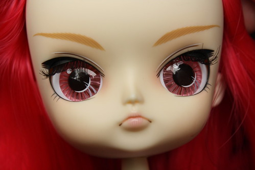 Phoebe face up