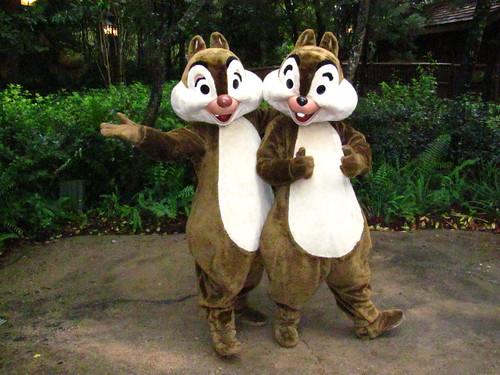 Chip n' Dale at Camp Minnie-Mickey at Disney's Animal Kingdom
