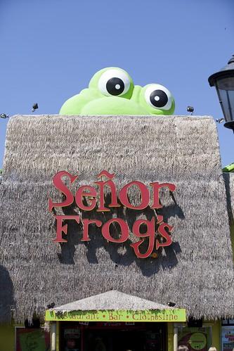 Señor Frogs