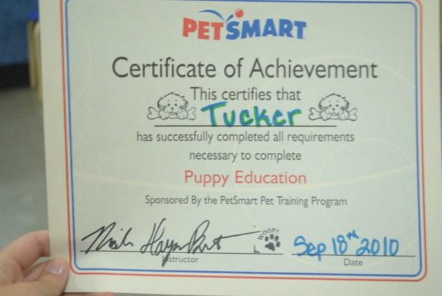 Tucker's Graduation