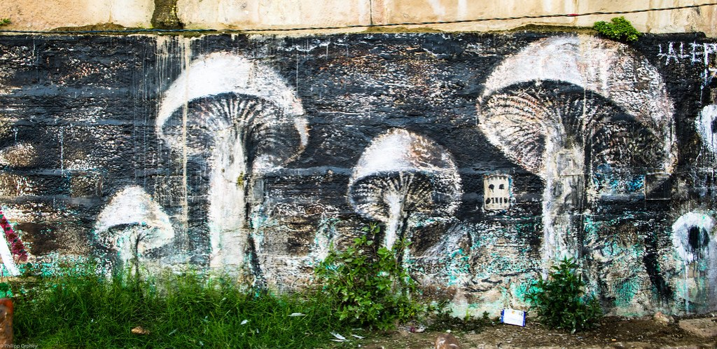lust-4-life travelblog streetart varanasi (46 von 52)