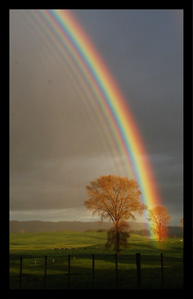 Multi Layered Supernumerary Rainbow Reflection Week42pix