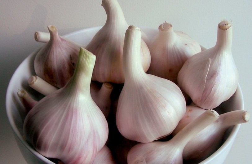 garlic-bowl