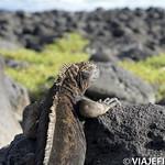 Viajefilos en San Cristobal, Galapagos 054