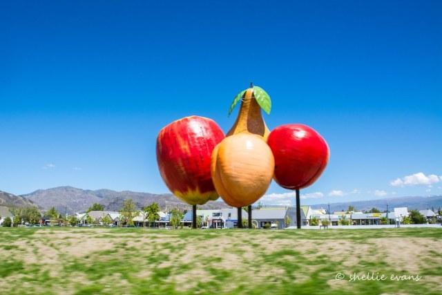 Cromwell's Big Fruit