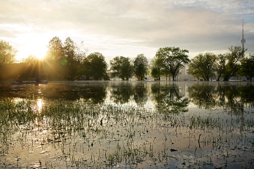 Toronto Islands Flooded Danny Williams @braziliandanny 56