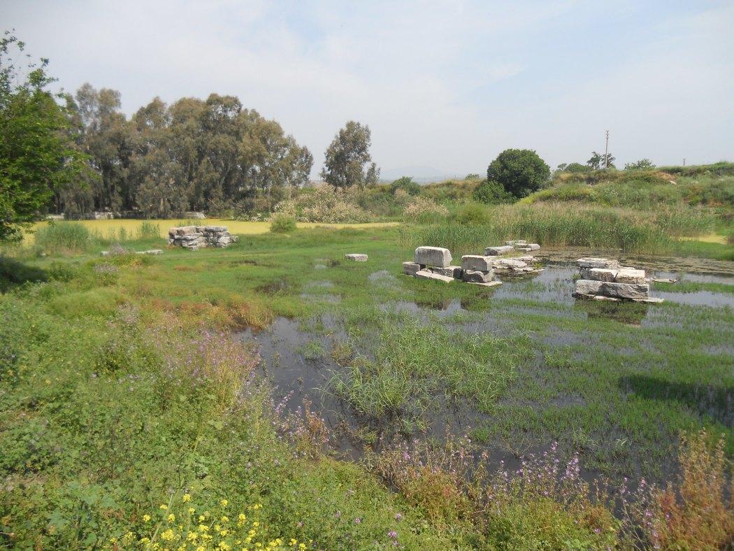 Artemision, Selcuk
