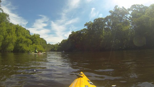 Edisto River Time Lapse