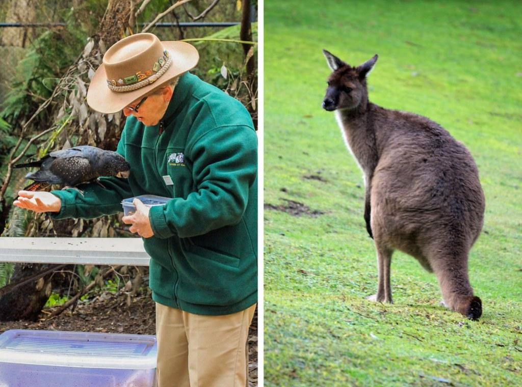 off beaten track i Australien