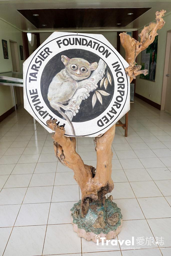 菲律宾薄荷岛眼镜猴保育中心 Tarsier Sanctuary (5)