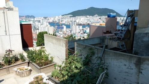 Nampodong (남포동)