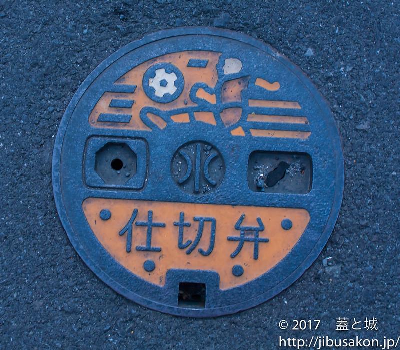 shizuoka-manhole-5