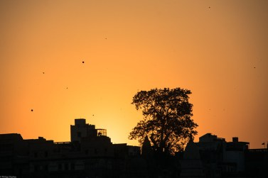 lust-4-life travel blog india varanasi (8 von 8)