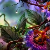 flowers wallpaper - 3d abstract wallpaper download hd free.