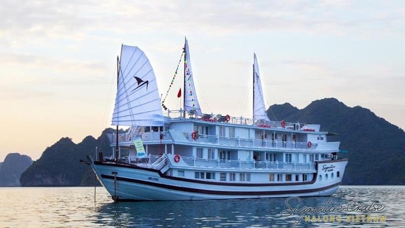 Signature Royal Cruise 1