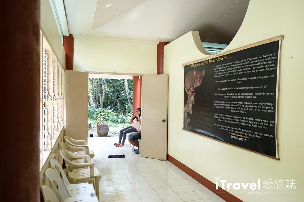 菲律宾薄荷岛眼镜猴保育中心 Tarsier Sanctuary (7)